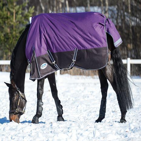 WeatherBeeta Comfitec Plus Dynamic Standard Mediumweight Turnout - Purple/Black