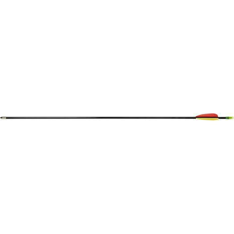 Decoy Arrows - Fiberglass - 30