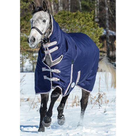WeatherBeeta Comfitec Essential Combo Neck Lite Plus Turnout Rug - Worn View