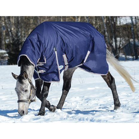WeatherBeeta Comfitec Essential Combo Neck Lite Plus Turnout Rug - Worn View in the Snow