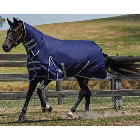 WeatherBeeta Comfitec Essential Combo Neck Lite Plus Turnout Rug - Worn View in the Field