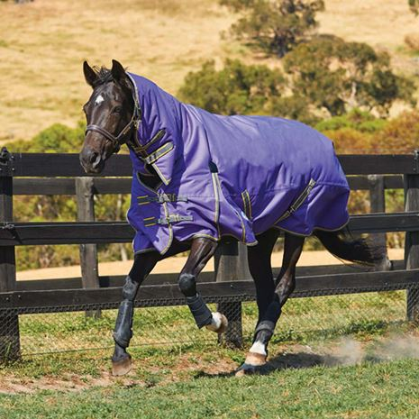 WeatherBeeta Comfitec Classic Combo Neck Heavyweight Turnout Rug - Navy/Silver/Red