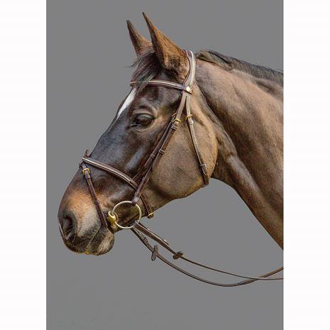 Mountain Horse Meteor Bridle - Havana