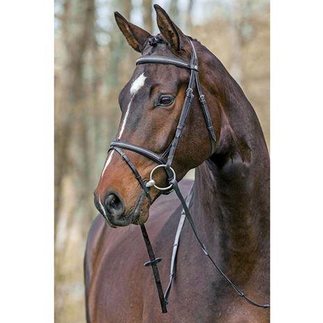 Mountain Horse Meteor Bridle - Black