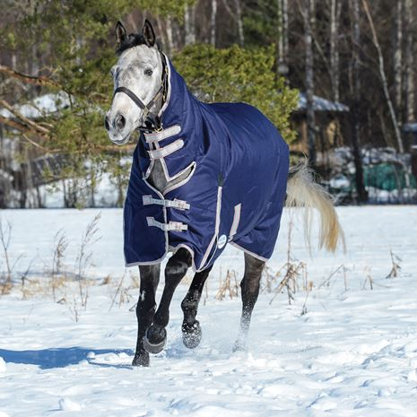 WeatherBeeta Comfitec Essential Combo Neck Lite Weight Turnout Rug - Navy/Silver/Red