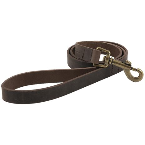 Ancol Heritage Leather Collars and Lead - Havana