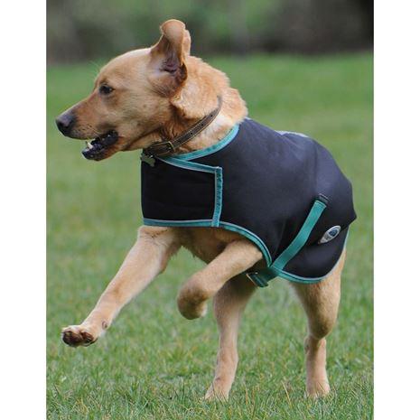 WeatherBeeta Green-Tec 900D Dog Coat Medium