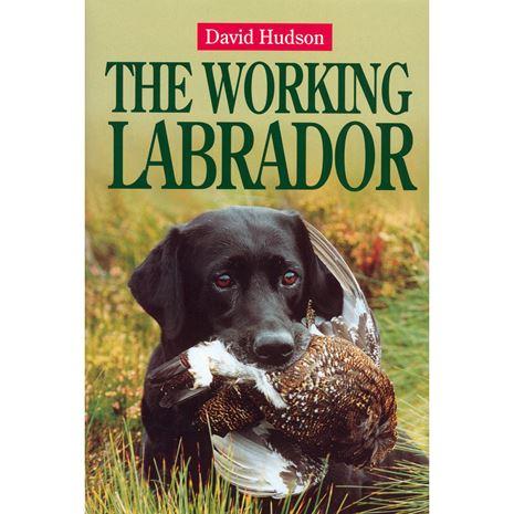 Training The Working Labrador Book