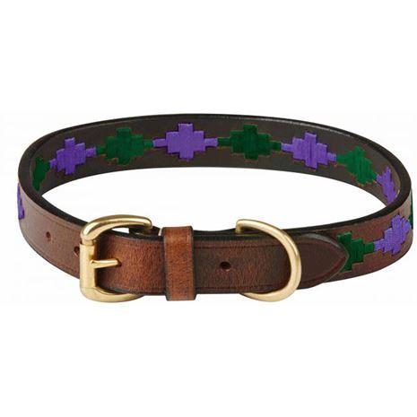 WeatherBeeta Polo Dog Collar Beaufort Brown Purple & Teal