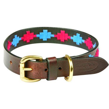 WeatherBeeta Polo Dog Collar- beaufort brown pink & blue
