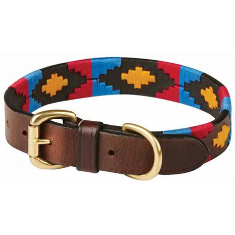 WeatherBeeta Polo Dog Collar-Cowdray Brown, Pink, Blue, Yellow