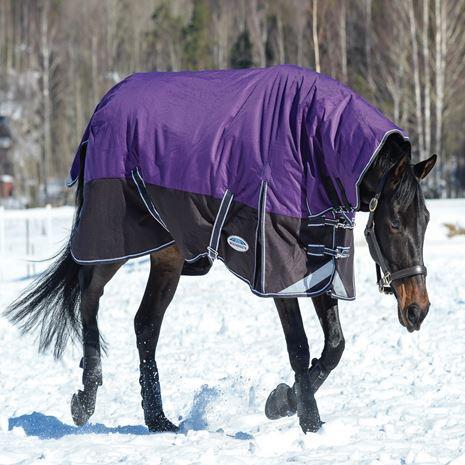 WeatherBeeta Comfitec Plus Dynamic Combo Mediumweight Turnout - Purple/Black